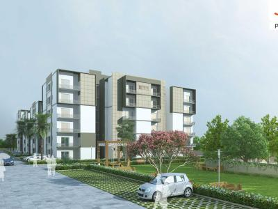 Sushma Joynest zrk, Gazipur Road, Near Ambala-Chandigarh Highway